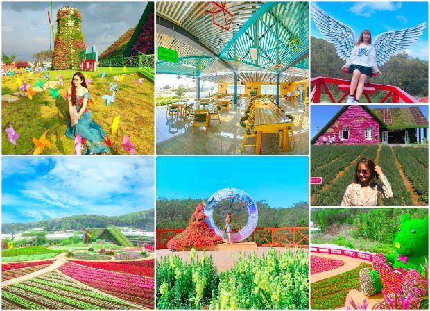 Top 10 địa điểm du lịch Đà Lạt hấp dẫn nên checkin một lần trong đời