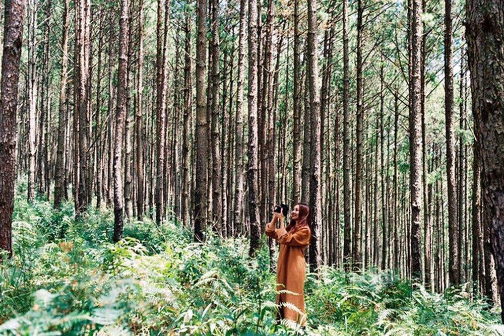 Phim Hay Quay Tai Da Lat