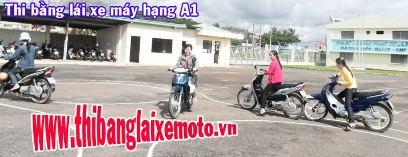 Các học viên thực hành thi bằng lái xe
