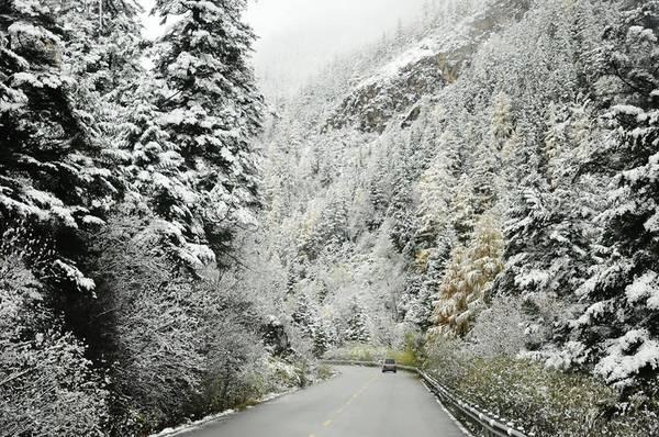 Tuyết rơi ở Sa Pa, khung cảnh không khác gì ở những quốc gia Bắc Âu.