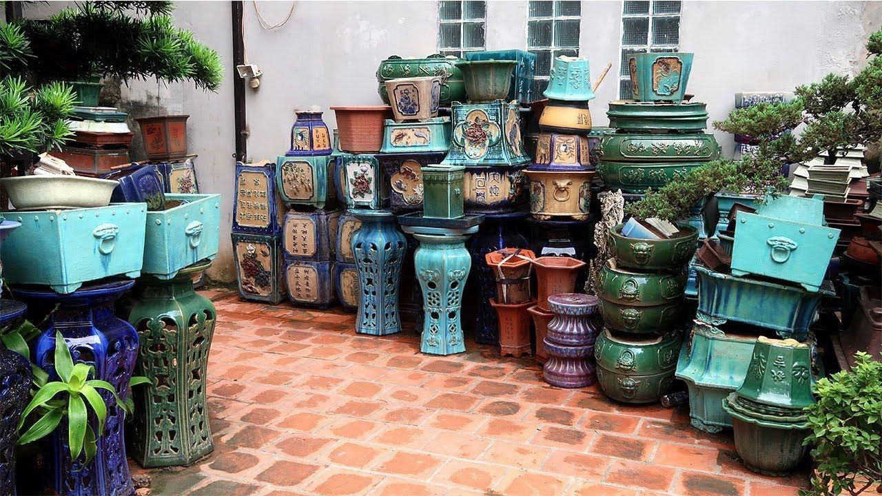 Địa chỉ đáng tin cậy mua chậu Bonsai, cây cảnh ở Hà Nội - YouTube