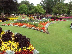 Kết Quả Hình ảnh Cho Flower Garden