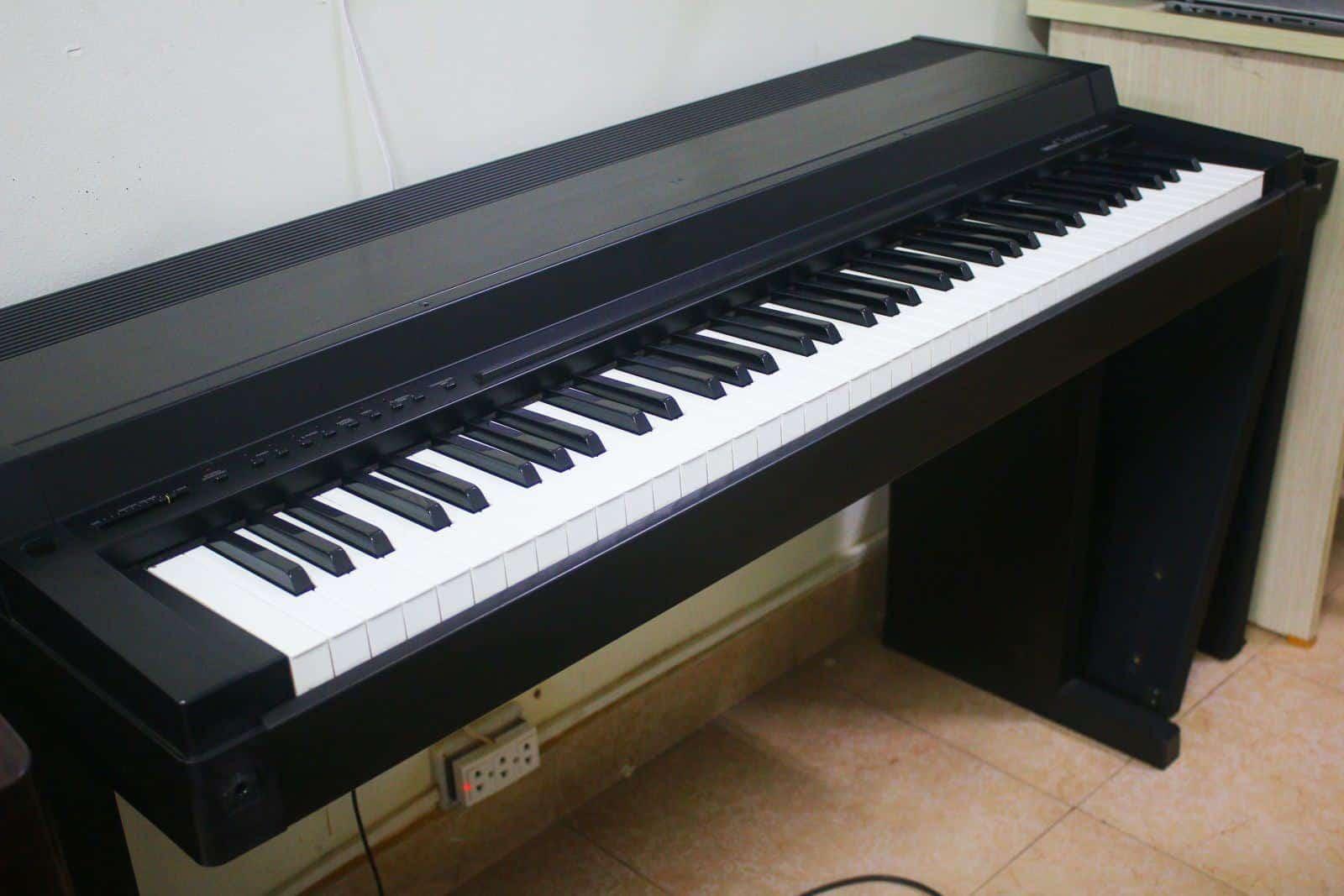 Trung tâm học đàn piano biên hòa uy tín