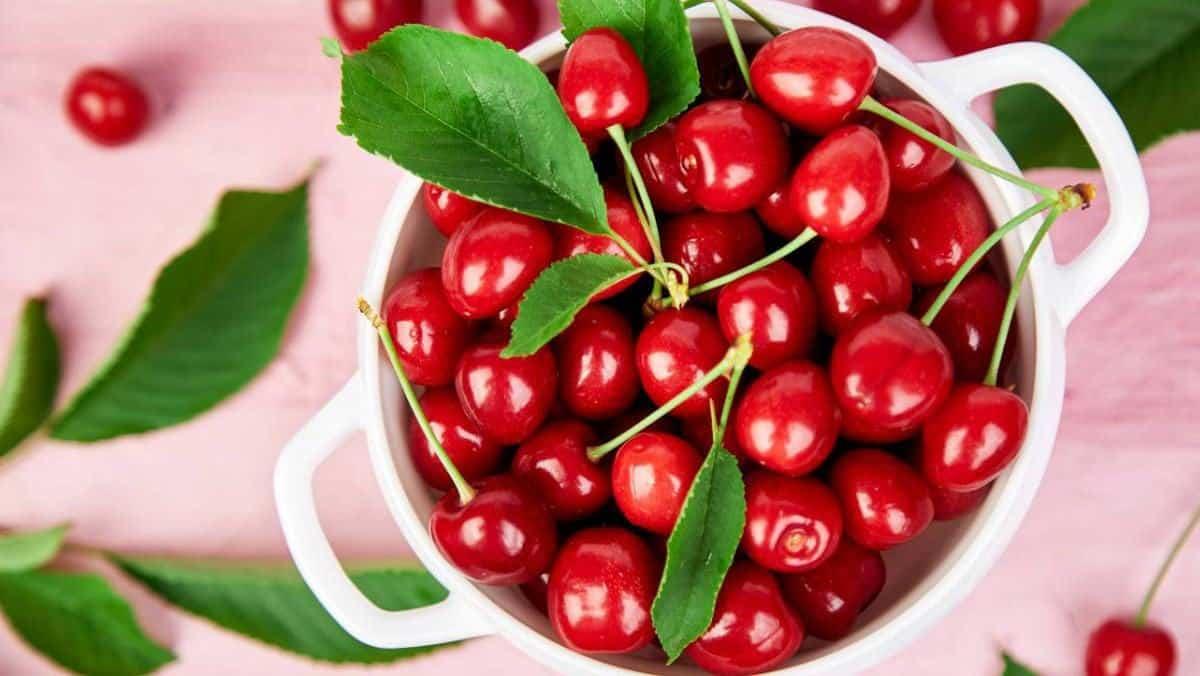9 tác dụng bất ngờ của cherry, cách chọn mua và bảo quản cherry