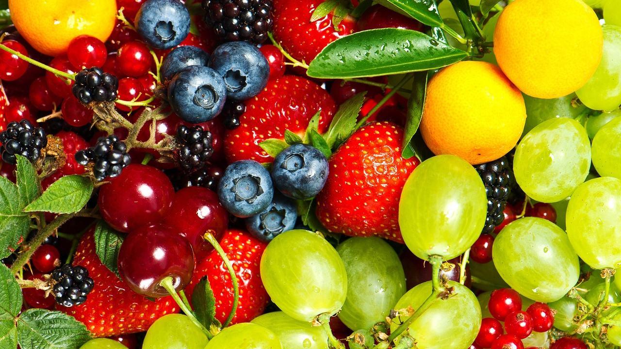 Thủ tục nhập khẩu trái cây tươi | TRACO Logistics