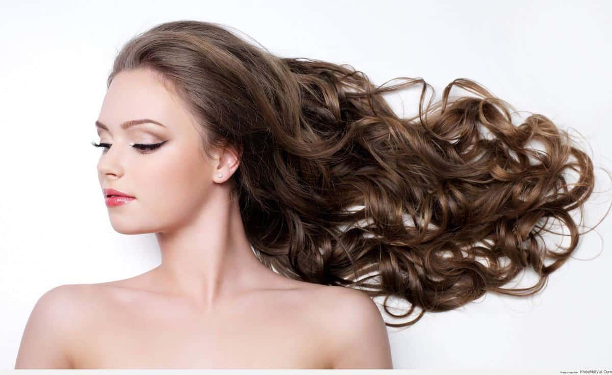 Bí kíp ngăn tóc gãy rụng hiệu quả ngay tại nhà   VnEconomy
