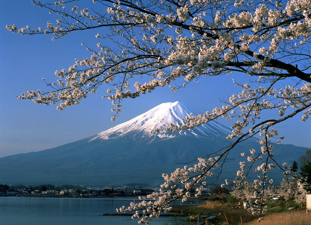 50 điều bạn cần biết về đất nước Nhật Bản - Migola Travel