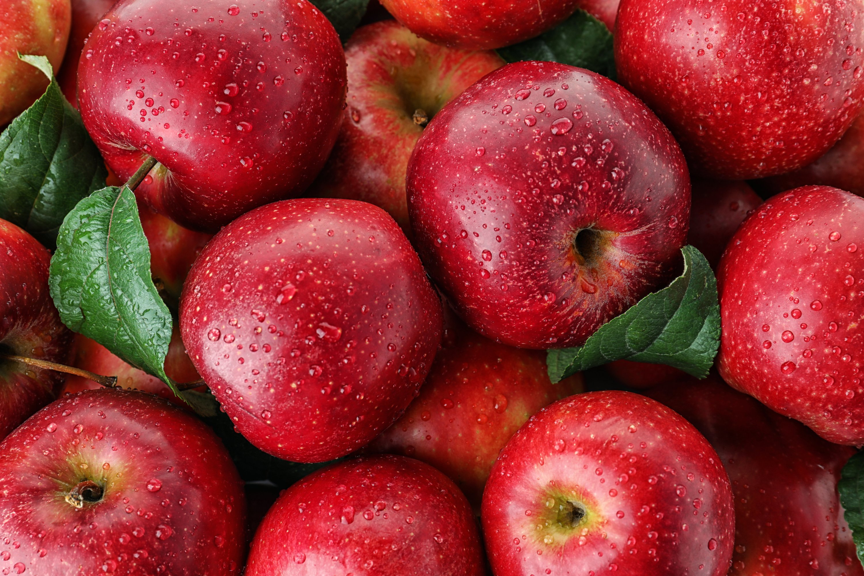 Turkish fruit producers get green light from Thailand's $210M apple market | Daily Sabah