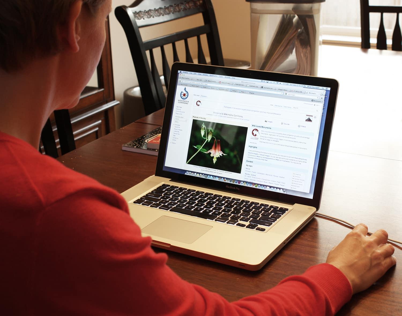 File:Woman using computer.jpg - Wikimedia Commons