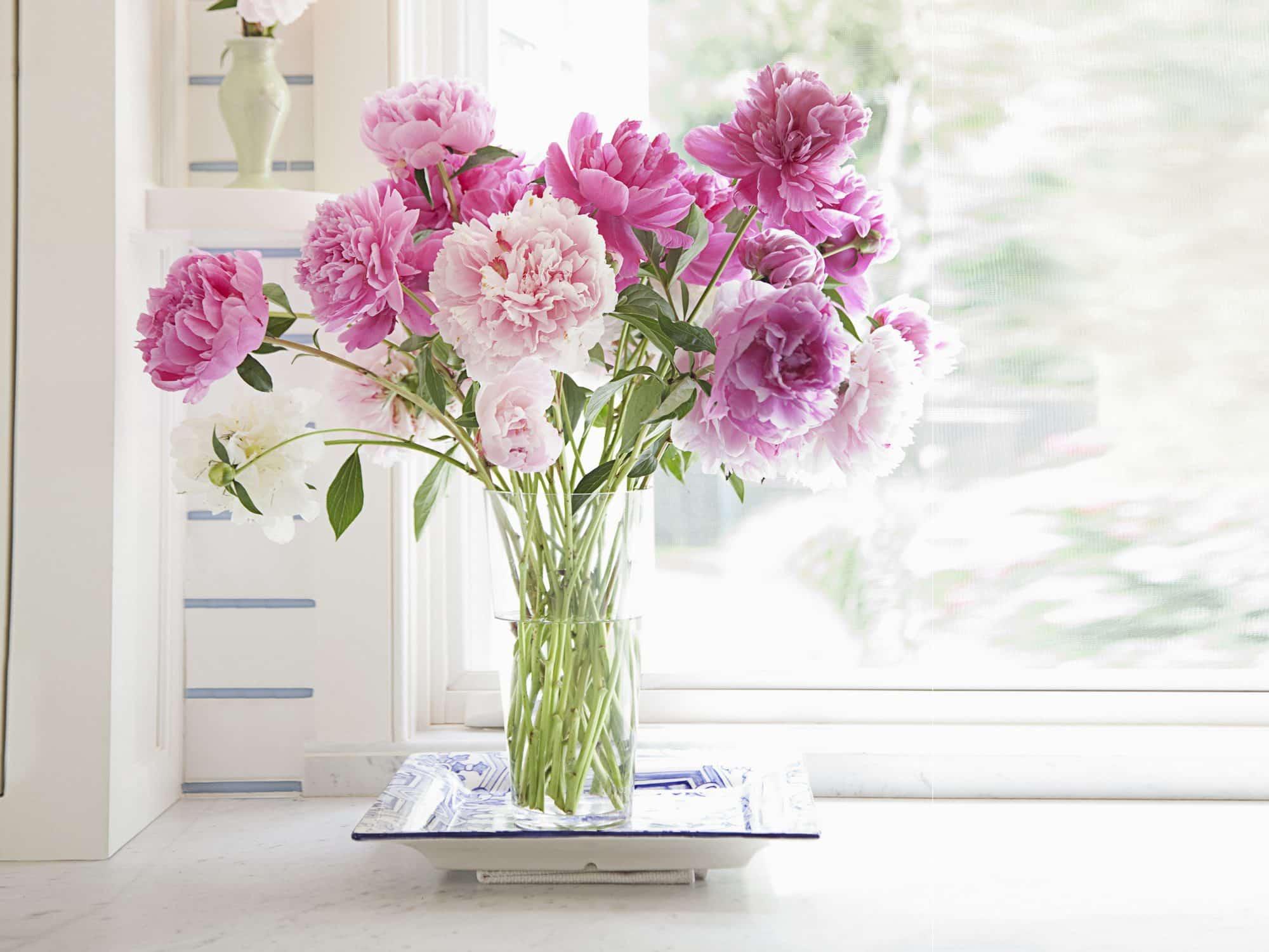 Shop hoa tươi Gò Vấp ( 2 )